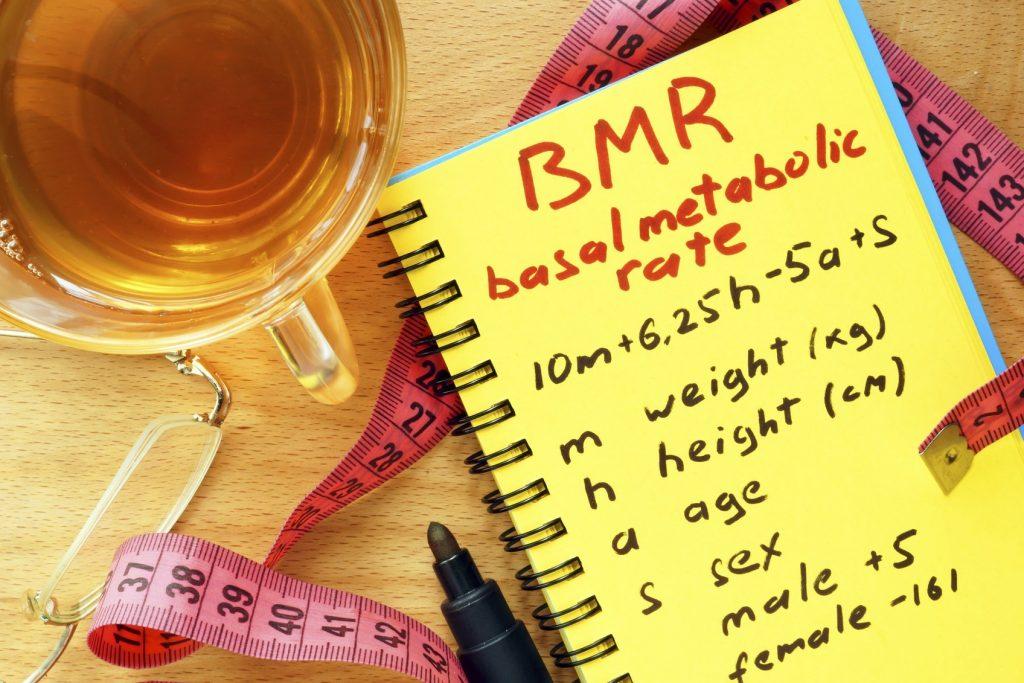 Chỉ số BMR - tỉ lệ trao đổi chất cơ bản trong cơ thể