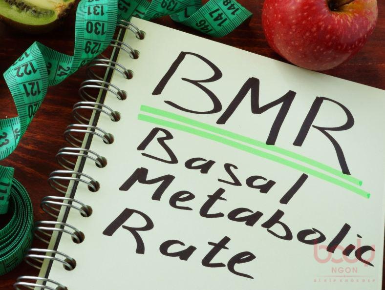 Chỉ số BMR và cách tính